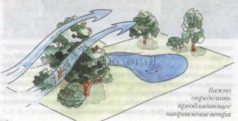 При выборе места для водоёма важно учитывать направление ветра